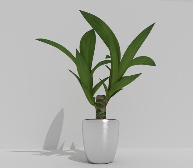 室内植物绿色植物盆栽3D模型
