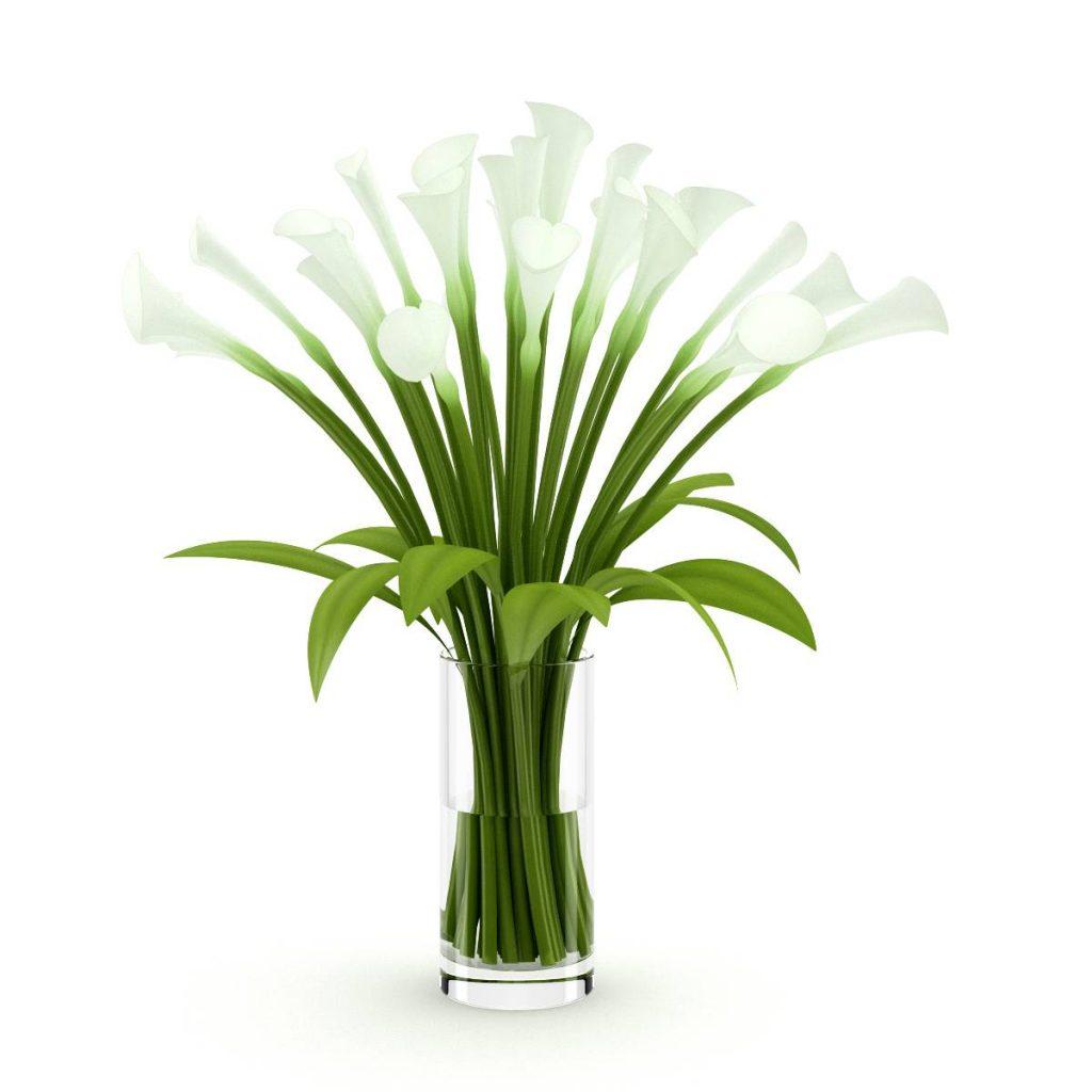 玻璃花瓶马蒂莲花束出的C4D模型