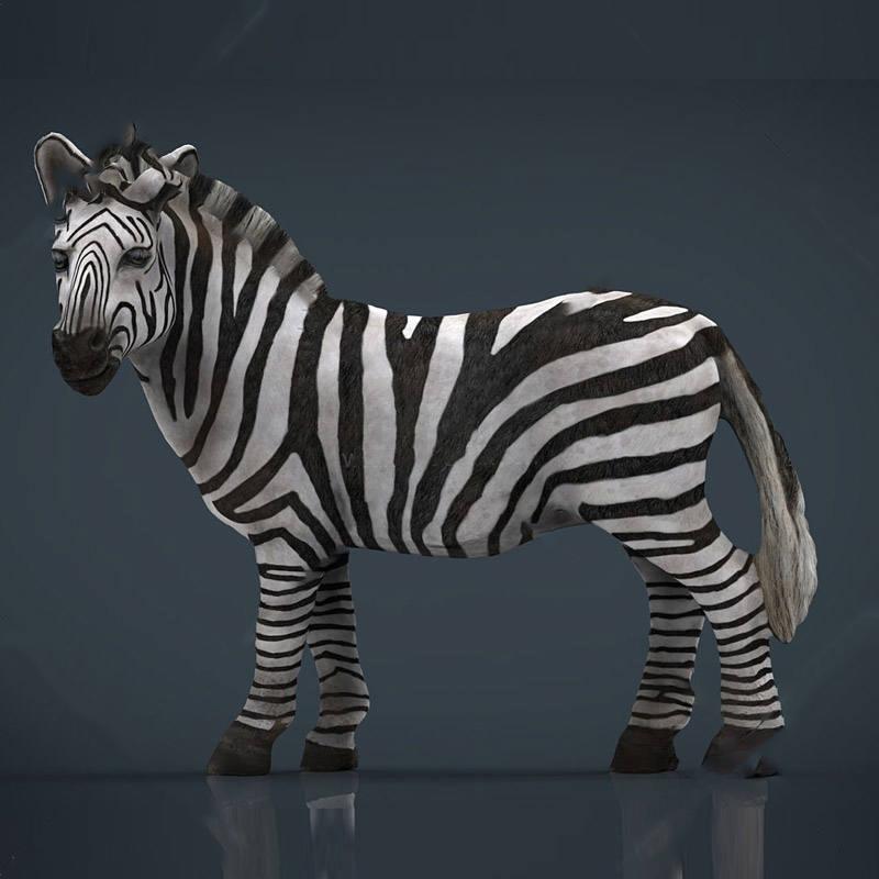 动物模型斑马模型