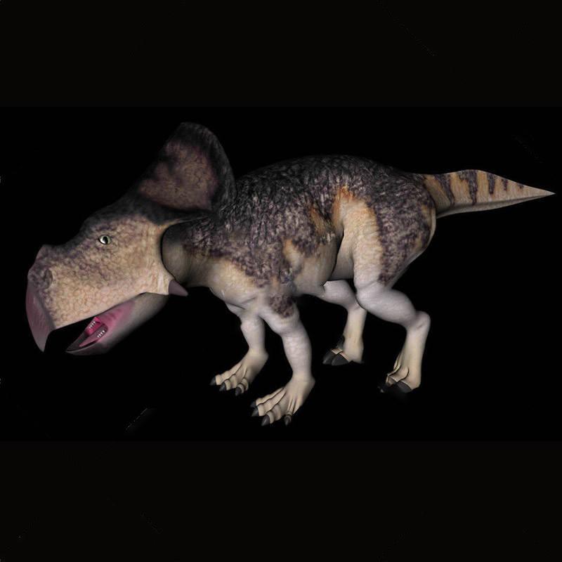 动物模型原角质体龙恐龙模型