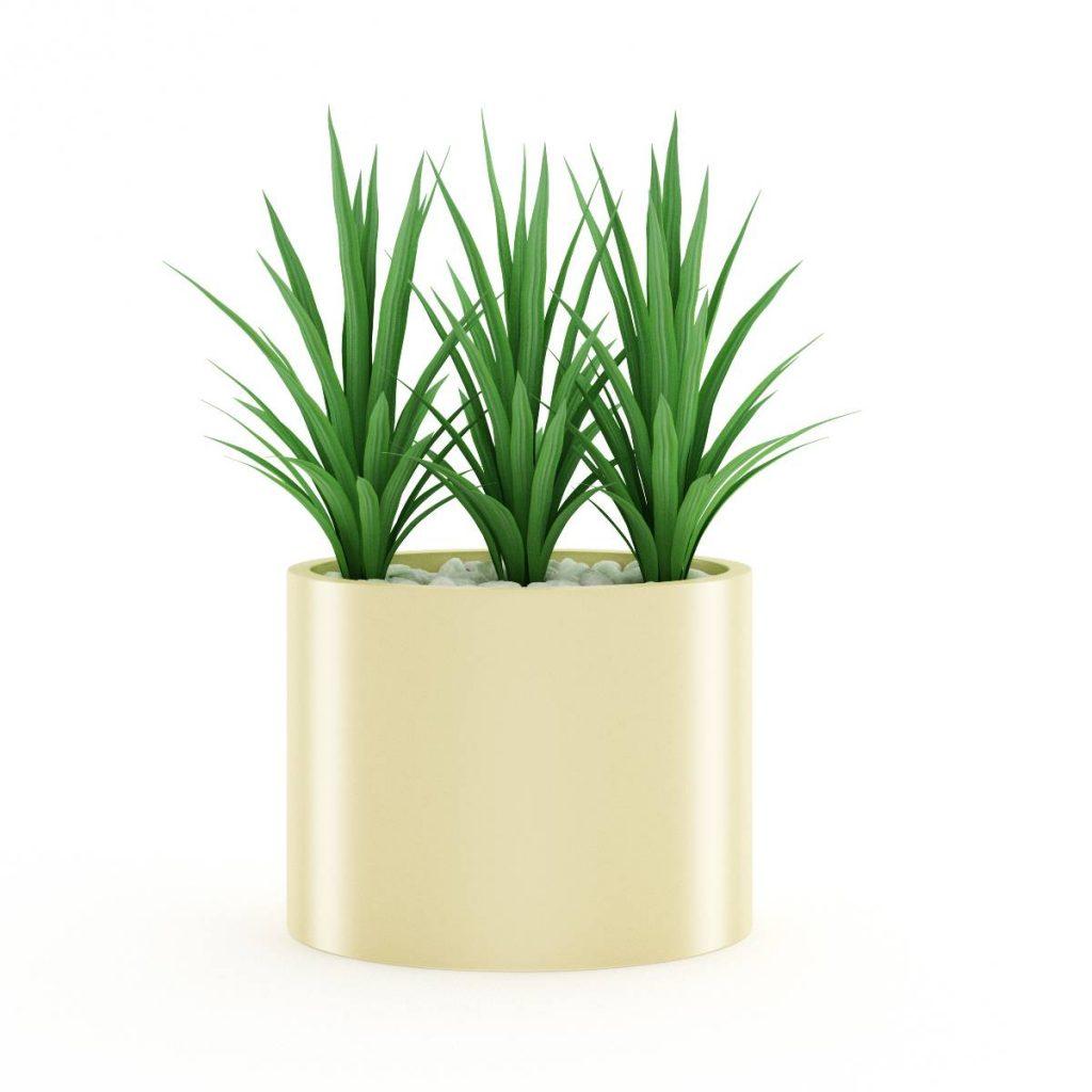 景观盆栽绿色植物C4D模型