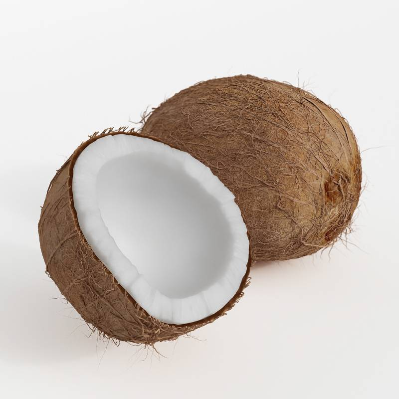 椰子蔬菜水果C4D模型