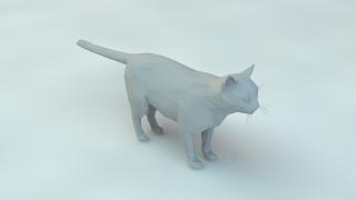 低聚合 低温多晶硅面板 猫模型 3D模型