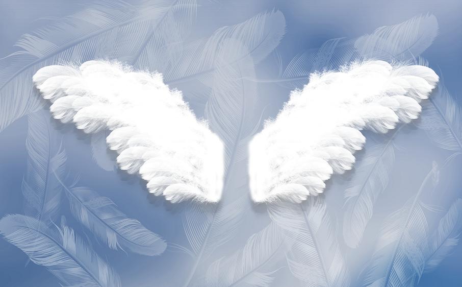 羽毛天使翅膀蓝色背景墙