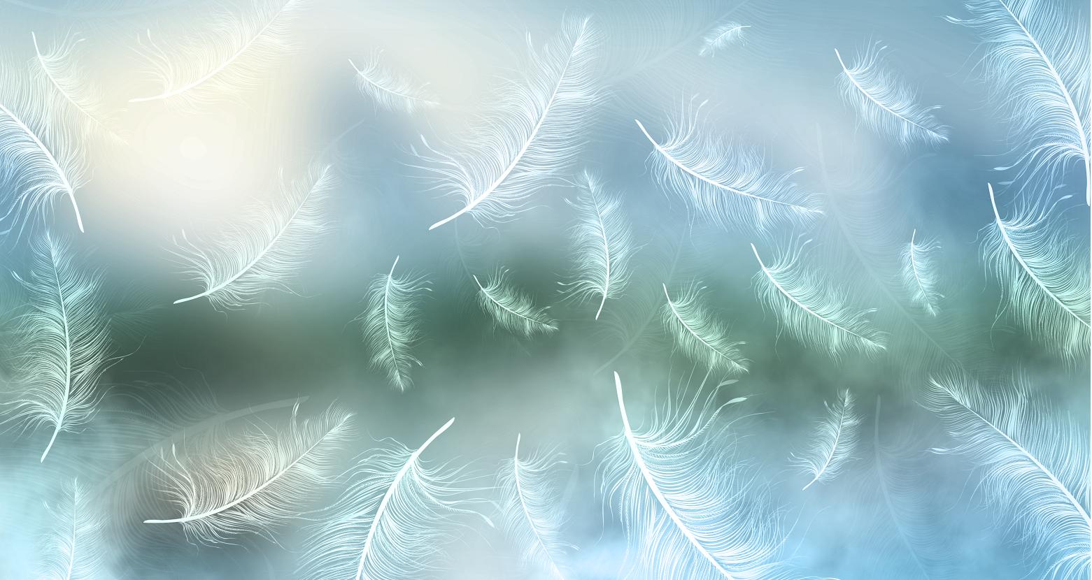 梦幻羽毛背景墙